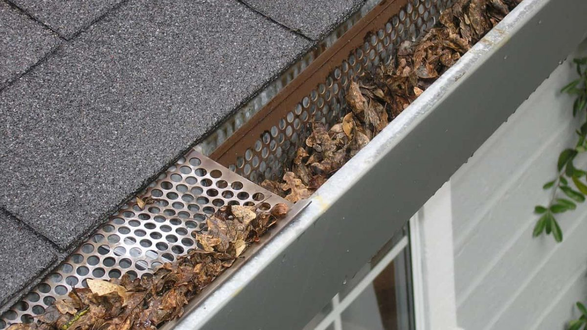 5 Reasons to Clean Your Gutters