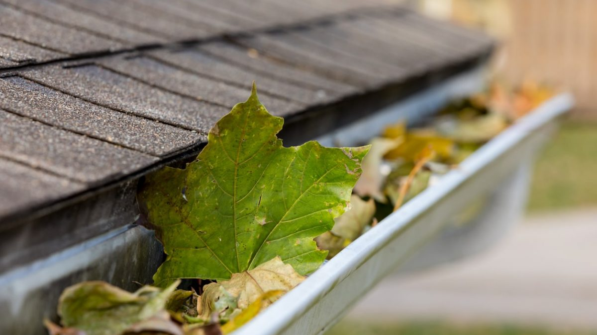 4 Essential Steps to Cleaning Your Gutters