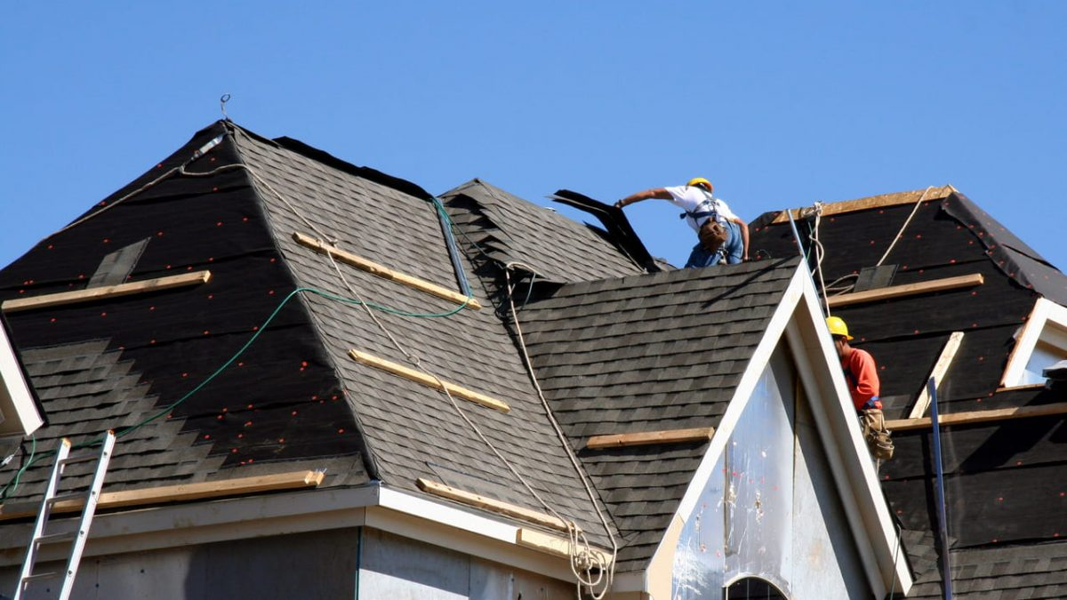 Do You Need a New Roof? Here's How to Know!
