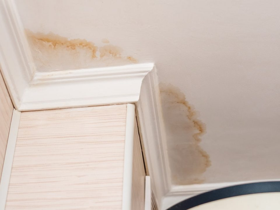 Are You Suffering From Water Damage? Find Out Here!