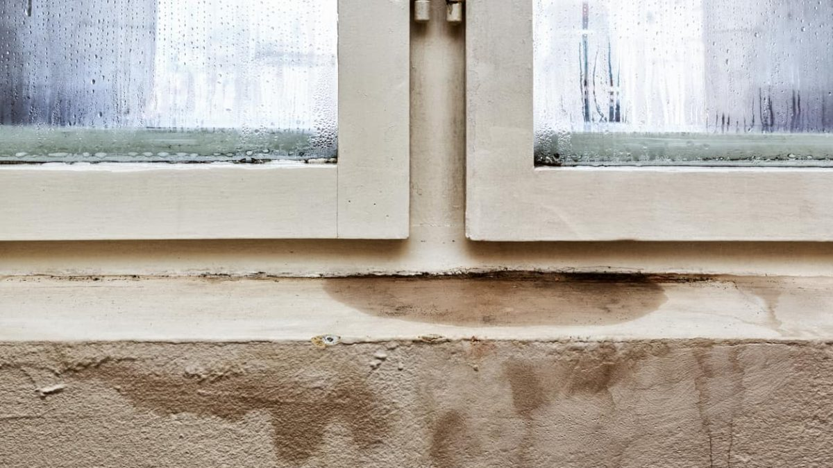 7 Signs You Need New Windows
